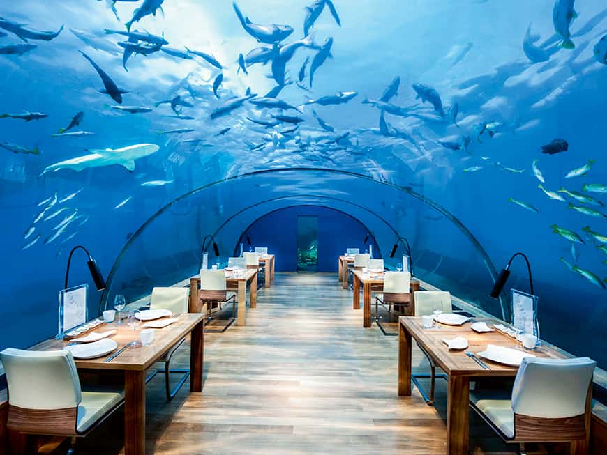 Das erste Unterwasser-Glas-Restaurant: unter dem Meer speisen im Ithaa