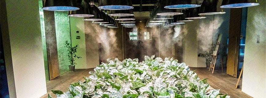 Um das Indoor-Wetter kümmert sich ein Computer: Ein intelligentes Klimasystem kontrolliert die Luftfeuchtigkeit und die Temperatur