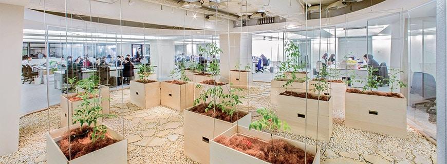 Die Farmen auf dem Dach sowie im Inneren des Gebäudes schaffen zusätzliche Arbeitsplätze. Besseres Arbeitsklima – menschlich wie auch metereologisch – inklusive.