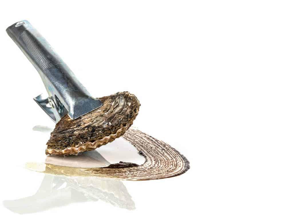 Austern vom Grill – Gefüllt mit Sauce von fermentiertem Knoblauch