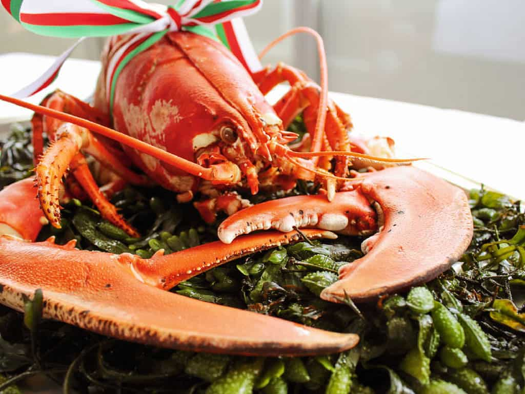 Luxuriöse Kulinarik: Um Helgoland herum finden Fischer frischeste Hummer, die ihrer Gattung alle Ehre machen