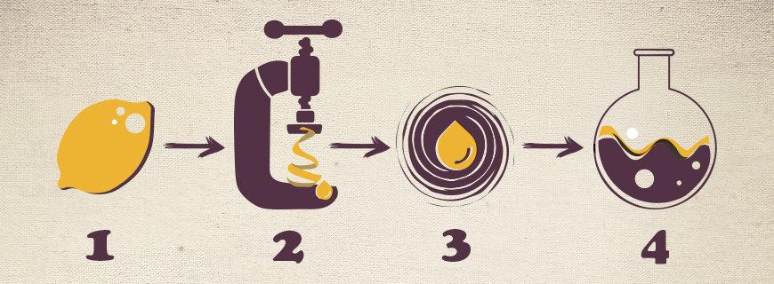 Schälen, quetschen, Wasser vom Öl trennen: Die Kaltpressung ist die schonendste Alternative zur Gewinnung von ätherischen Ölen.