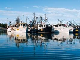 ein Hafen mit Fischerbooten