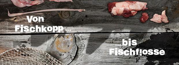 vom Fischkopp bis zur Fischflosse