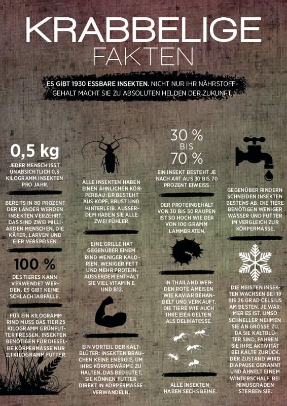Insektenfakten