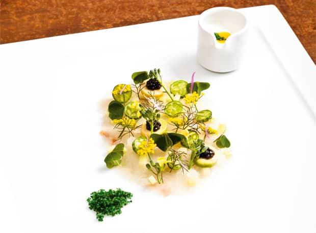 Aalrute - Met - Fenchelkraut