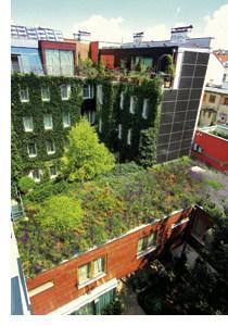 Nachhaltigkeit ohne Verzicht auf Luxus