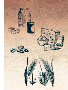 Paleo Tops und Flops