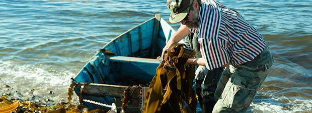 ein Fischer mit Algen