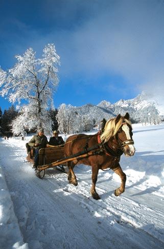 zwei Männer fahren mit einer Pferdekutsche durch den Schnee