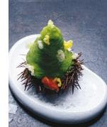 Seeigelflan  mit Sherryessig und Kopfsalatschaum