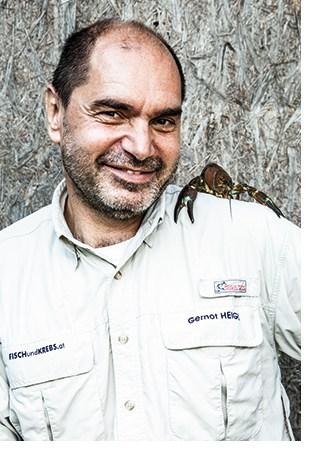 Gernot Heigl