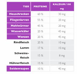 Proteintabelle von Insekten