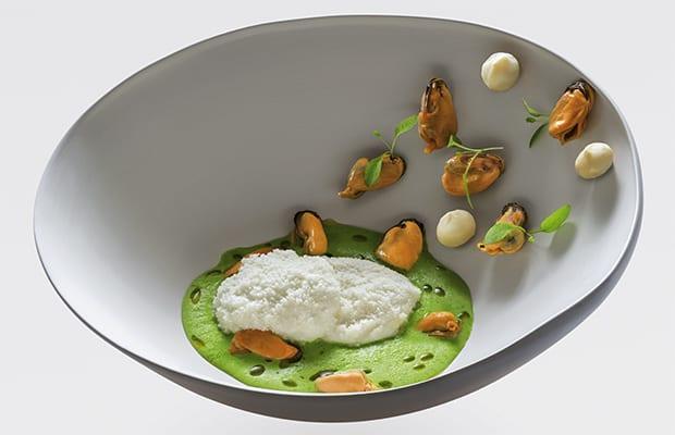 Macadamia, Ajo Blanco mit Miesmuscheln