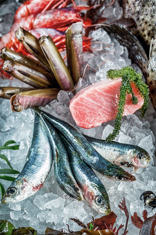 Fischvariation