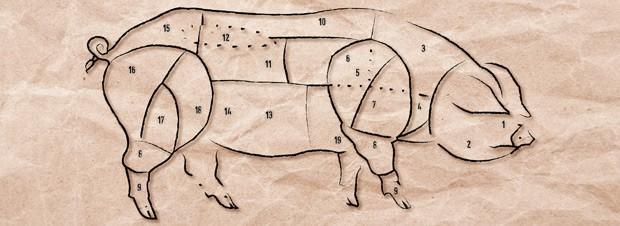 Schwein und seine Einzelteile