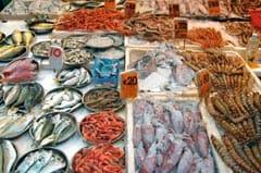 ein fischmarkt mit vielen verschiedenen meeresfruechten und fischsorten