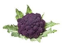 Violetter Brokkoli