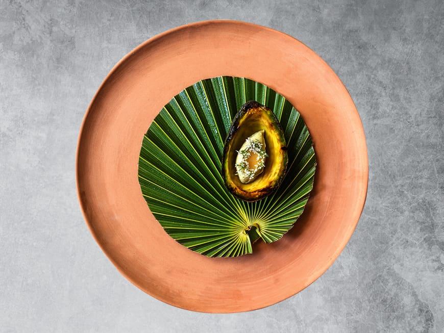 noma inspired by Mexiko: Avocado Dessert.